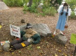 "October 13th: The Indianapolis Zoo celebrated ""ZooBoo"" for Halloween with a series of employee-designed dioramas. This example attempted to salute Halloween, Oz, and conservation all at once, with mixed results."