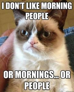 Grumpy Cat, mornings