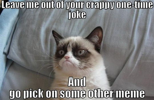 Grumpy Cat Hates Being Your Punchline