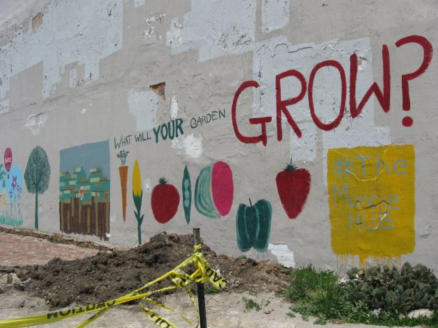 Garden Graffiti!