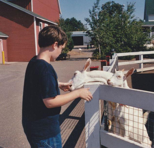 Hunger Goats!