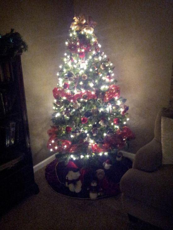Spare Christmas Tree!