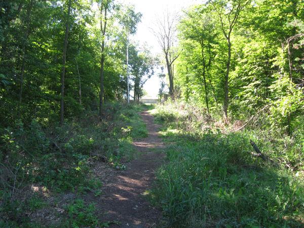 Random trail!
