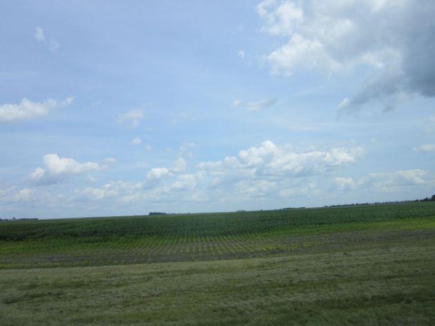 Farmland!