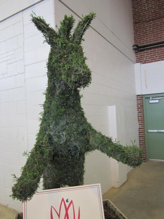 Topiary Donkey!