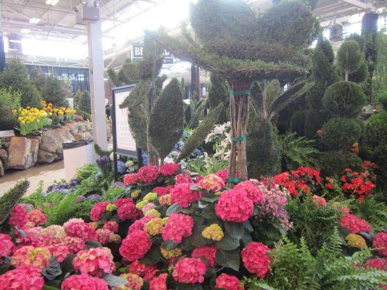 Topiary Plus!