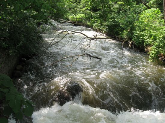 Minnetonka Creek Rapids!