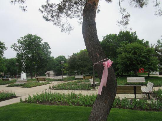 Freimann Square Park!