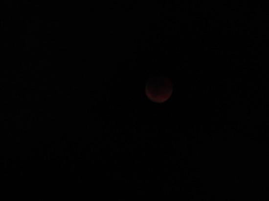 Super Blood Moon!