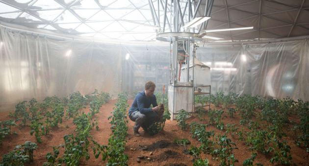Martian Potatoes!