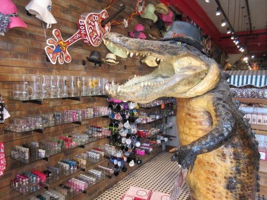 Shot Glass Gator!