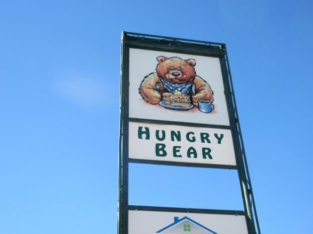 Hungry Bear!