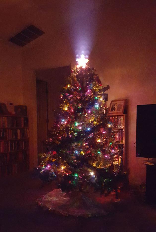 Christmas Tree 2015!