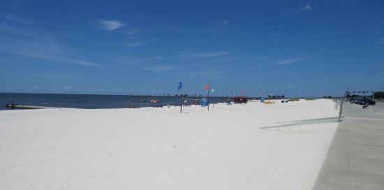 Beach Life!