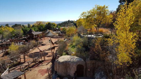 Cheyenne Mountain Zoo!