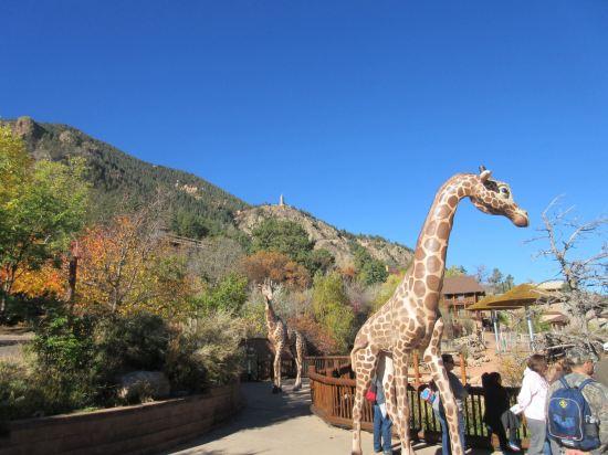 Fake Giraffes!