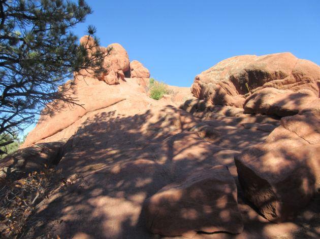 Red Rock Rocks!