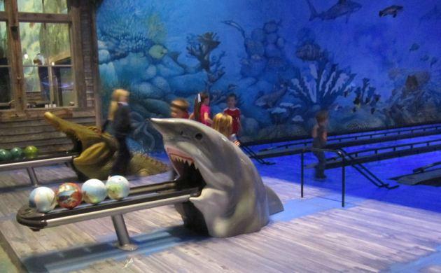 Shark Ball Return!