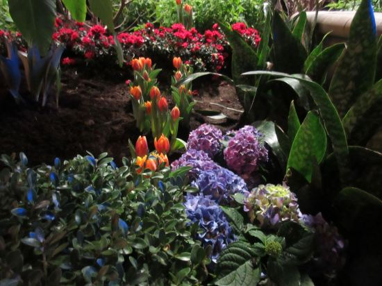 Indiana Flower & Patio Show!