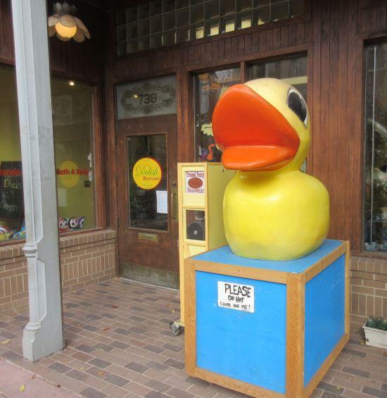 Quacker Gift Shop!