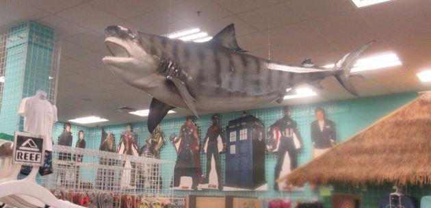 Shark Heads Standees!