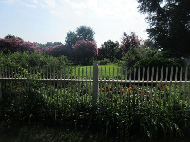 White Fence!