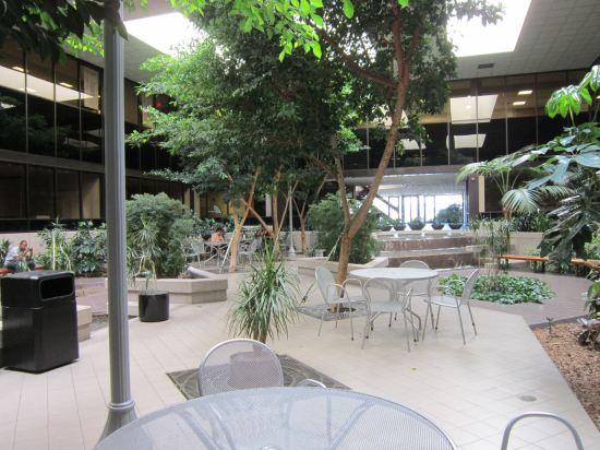 Courtyard!