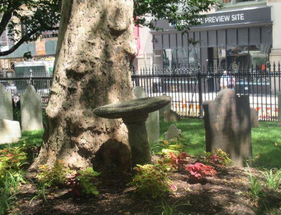 St. Paul's birdbath!