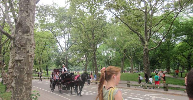 Central Park Horse Ride!