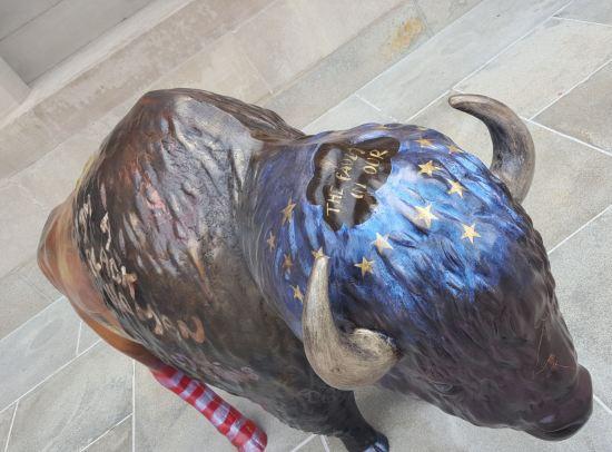 John Green bison!