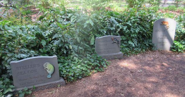 Extinct Species Graveyard!