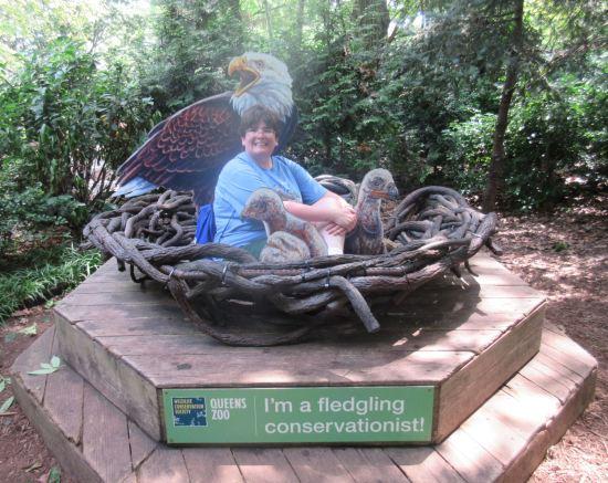 fledgling conservationist!