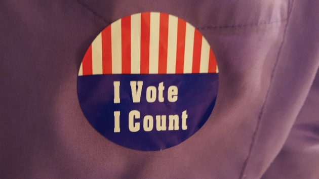 I Voted! I Count!