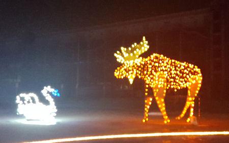 Christmas moose!