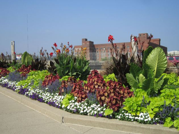 Union Terminal flowers!