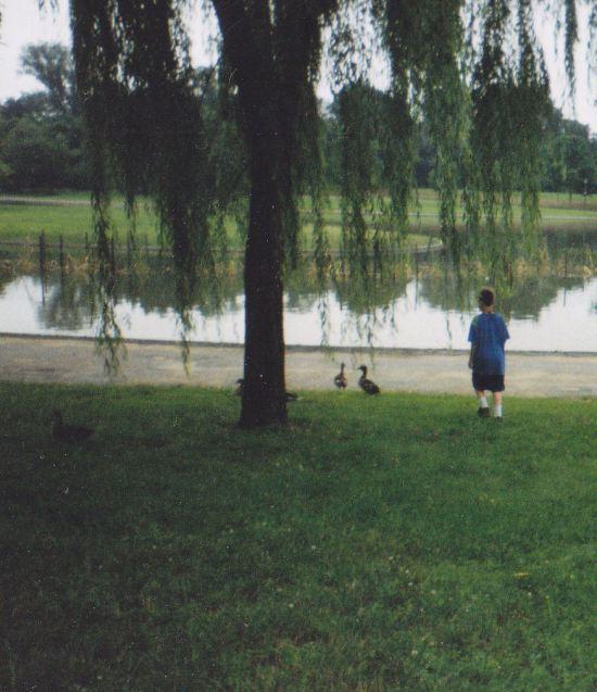 Constitution Gardens Pond!