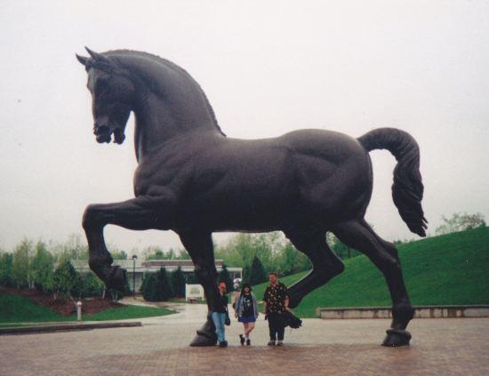 American Horse!