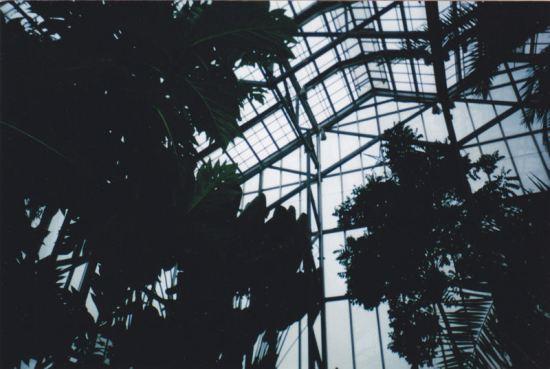 Meijer Gardens roof!