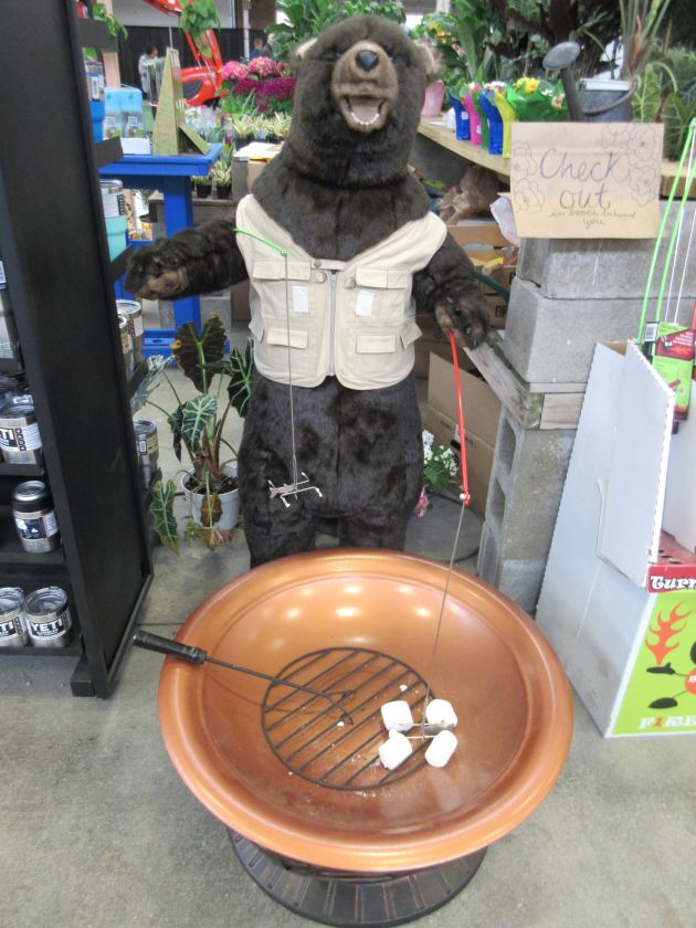 grilling bear!