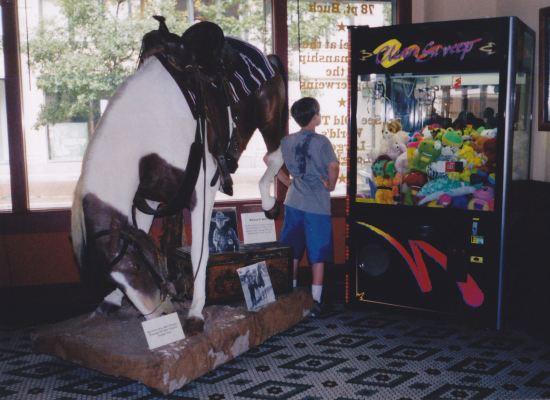 Horse + Stuffed Animals!