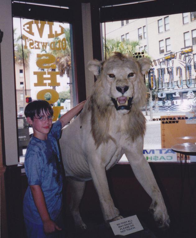 Kimba the White Lion!