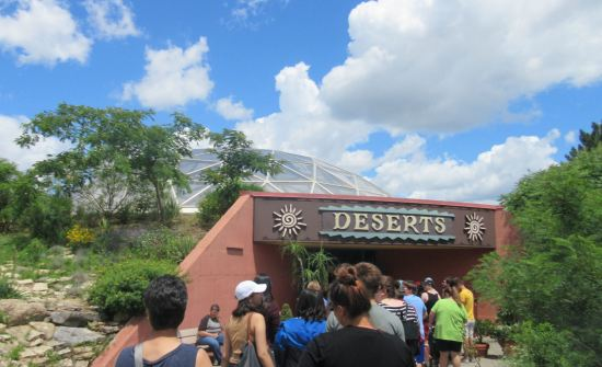 Deserts!