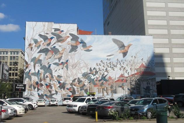Flying Birds!