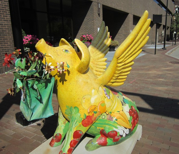 Flying Pig Yellow!