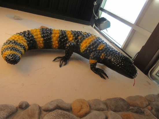 Gila Monster!