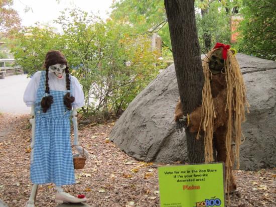 scary Dorothy!