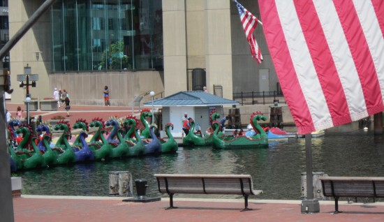 Dragon Boats!