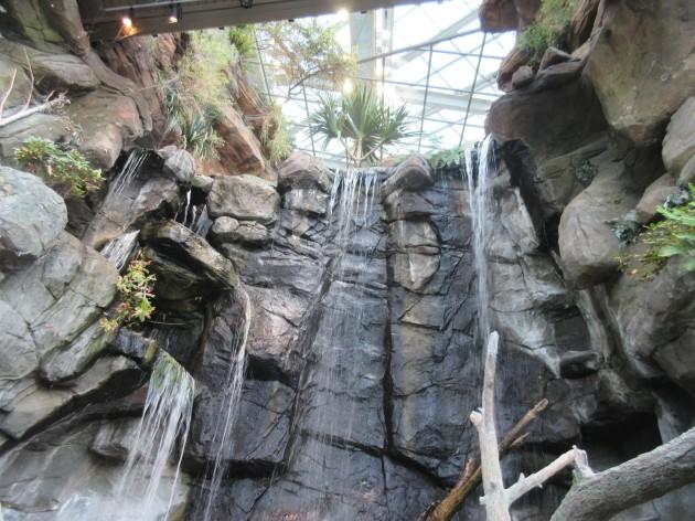 Aquarium Waterfall!