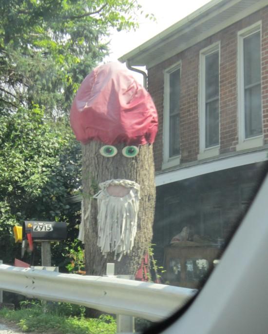 Tree Creep!