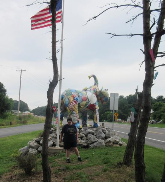 Anne + elephant!